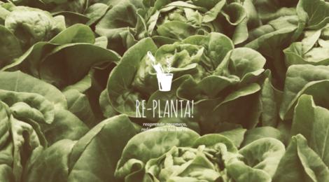 Plantar está na nossa natureza