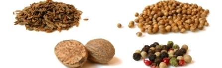 Novamente a nova lei das sementes