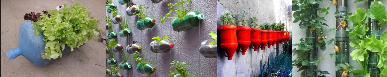 Será seguro cultivar em garrafas de plástico?