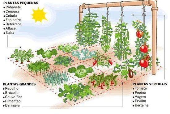 Apenas um metro quadrado para a sua horta? Não é um problema!