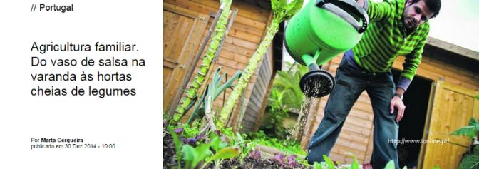 Agricultura urbana veio para ficar
