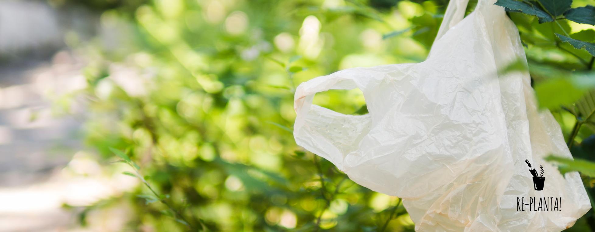 Plástico: a importância do uso consciente