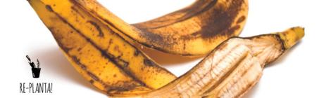 Receita sustentável: bolo de cascas de banana