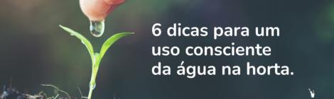 Água: 6 dicas para o uso consciente na horta